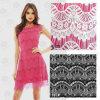 Merletto di nylon di /Embroidery del merletto di /Crochet del tessuto vestito da modo/del tessuto