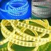 Van Flex LEIDENE van de decoratie Witte/Warme Wit Strook van de Verlichting/Rood/Groen/Blue/RGB 5050