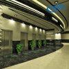 Ascenseur pertinent et économiseur d'énergie de passager sans la pièce de machine (Deeoo-004-8)