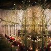 Het Licht van de LEIDENE Berk van de Stam voor de Decoratie van de Tuin