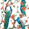 Bella pittura a olio dei pavoni su tela di canapa