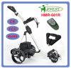 Carros de golf teledirigidos (HMR-601R)