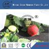농업 사용 생물 분해성 100% PP Spunbond 부직포 직물