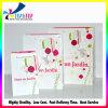 Farbenreicher kosmetischer Papierbeutel/bilden Bag/Artpaper Bag/Gift Beutel