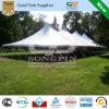 40feet X100feet Steel Frame Pólo Tent (pode prender 240 convidados assentar para baixo em mesas redondas)