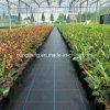 Pp. gesponnene schwarze landwirtschaftliche Weed-Matte
