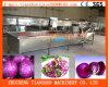 De Schoonmakende Machine van de bel voor Blad groente-Brassica Oleracea