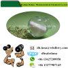 Citrate de tamoxifène de Nolvadex de stéroïdes d'oestrogène d'approvisionnement de la Chine (54965-24-1)