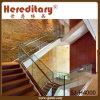 De Balustrade van het Glas van de vorst/de Leuning van de Trede voor de Concrete Treden van de Flat (sj-H4000)