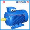 Motor de C.A. da baixa tensão de eficiência Ye2 elevada