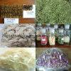 Vakuum Freeze Dryer für für Food, Fruits, Vegetables und Lyophilizer Price