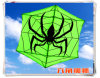 Bello 180cm*150cm Big Big Big Dual Line Sports Kite