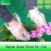 Freier Houseworking wegwerfbarer PET Handschuh