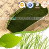 Polvo al por mayor/Tablet/Capsule de la Chlorella del producto de la salud