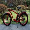 Bicicletta elettrica Rseb-505 della neve del modello a caldo di Ristar