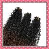 Цвет тона волос 14inches бразильский 2 курчавых человеческих волос Weft