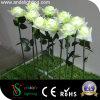 Света цветка имитации СИД белые Rose