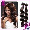 高品質のバージンのブラジルの波状毛、100%年のバージンの毛(GP-BR-BD)