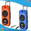 Altofalantes dobro da bateria da polegada 2X10 com 2 o Woofer Bluetooth F73 claro