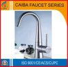Choisir le robinet en laiton de cuisine de traitement (CB-21235)