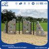 Напольная спортивная площадка Equipment Climbing Wall для Children (RC-14004)