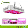 La pianta idroponica di spettro completo LED dell'indicatore luminoso 300W 450W 600W 800W 900W 1000W 1200W della pianta del LED coltiva l'indicatore luminoso