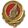 3D Alto-Grade Delicate Gold Plated Badge (GZHY-BADGE-009)