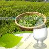 Выдержка 98% L-Theanine зеленого чая