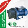 1.0HP 220V 깨끗한 물을%s 플라스틱 펌프 바디 정원 수도 펌프