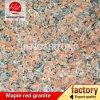 Granito rosso dell'acero cinese G562, granito rosso dell'acero, granito rosso