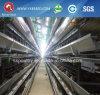 La H digita la gabbia automatica del pollo da carne della batteria per la strumentazione dell'azienda agricola del Kenia