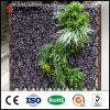 UV 보호를 가진 인공적인 수직 정원 녹색 벽