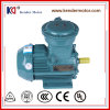 De explosiebestendige AC van de Inductie Elektrische Motor is voor Maalmachine van toepassing