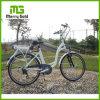 Bici blanca de moda de la ciudad del color E con el portador trasero para las muchachas