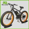Angemessener Preis En15194 genehmigte Fahrrad die 40-45km Reichweiten-fettes des Gummireifen-E