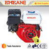 4 rifornire la benzina stridente portatile della strumentazione per il motore Gx160 della Honda