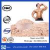 Het ruwe Poeder van de Weiproteïne voor het Supplement van de Voeding van Sporten Bodybuilding