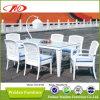 Tableau dinant de rotin de meubles de présidence de rotin mis (DH-6169)