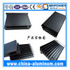 Protuberancia de aluminio de encargo/perfil de aluminio
