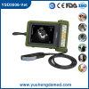 Plein CE vétérinaire tenu dans la main Ysd3006-Vet approuvé de système d'ultrason de Digitals