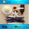 Qualitäts-Vanillin-Hersteller, heißer Verkauf! ! !