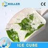 Машина Koller большая и стабилизированная съестная кубика льда в горячей области