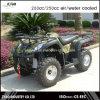 UTV 250cc die ATV met Ce- Certificaat rennen
