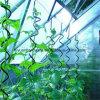 Métal Rod spiralé durable en acier de tomate d'approvisionnement d'usine