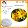 Raiz de chicória P.E. para Synanthrin