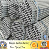 Factory professionale di Pre Galvanized Pipe per Fence