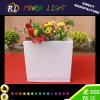 Bac de fleur cubique en plastique de jardin de la lueur DEL Indoor&Outdoor