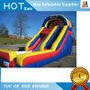 Parque inflable tropical comercial del agua de la diapositiva