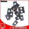 Venta caliente Cumins Motor Parts Kta19 Spring Nut 3000528