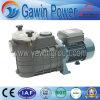 Globaler Garantie Fcp Serien-Filter-Schleuderpumpe